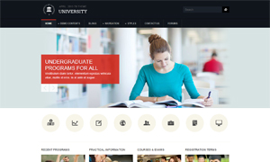 Education drupal theme TB University screenshot
